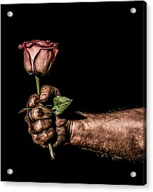 Be Mine Acrylic Print by Aaron Aldrich
