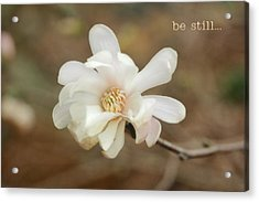 Be Still Acrylic Print