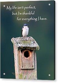 Be Thankful Acrylic Print by Bill Wakeley