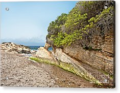 Beach At Montana De Oro Acrylic Print by Artist and Photographer Laura Wrede