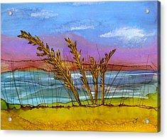 Beach Berm Acrylic Print