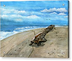 Acrylic Print featuring the painting Beach Drift Wood by Melly Terpening