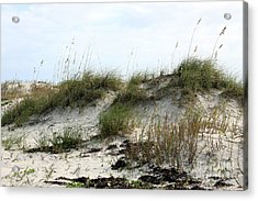 Acrylic Print featuring the photograph Beach Dune by Chris Thomas