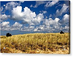 Acrylic Print featuring the photograph Beach Dunes by Amazing Jules