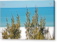 Beach Front View Acrylic Print by Aimee L Maher Photography and Art Visit ALMGallerydotcom
