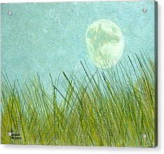 Beach Grass With Moon Acrylic Print by Kenny Henson