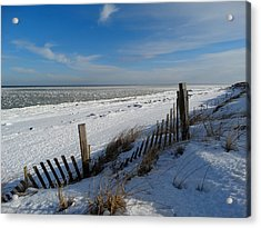 Beach On A Winter Morning Acrylic Print by Dianne Cowen