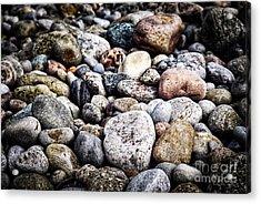 Beach Pebbles  Acrylic Print by Elena Elisseeva