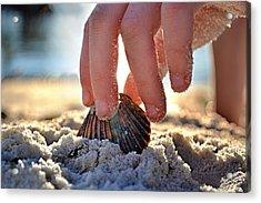 Beach Play Acrylic Print by Laura Fasulo