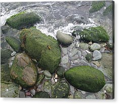 Acrylic Print featuring the photograph Beach Rocks by Robert Nickologianis