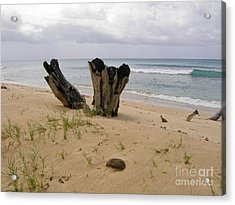 Beach Scenery Acrylic Print by Sophie Vigneault