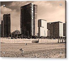 beach, Barcelona Acrylic Print
