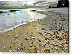 Beach Sunset And Seashells Acrylic Print by Eszra Tanner