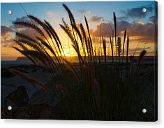 Beach Sunset Acrylic Print by Marc Bottiglieri