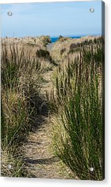 Beach Trail Acrylic Print by Tikvah's Hope