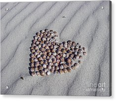 Beach Treasure Acrylic Print by Jola Martysz