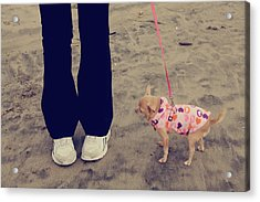 Beach Walk Acrylic Print by Laurie Search