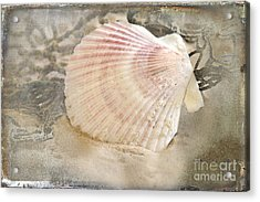 Beached Acrylic Print by Betty LaRue