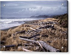 Beached Driftlogs Acrylic Print by Richard Farrington