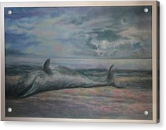 Beached Whale Acrylic Print