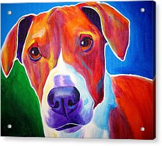Beagle - Copper Acrylic Print by Alicia VanNoy Call