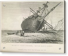 Beagle Laid Ashore Acrylic Print by British Library