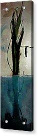 Beanstalk  Acrylic Print