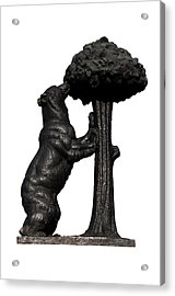 Acrylic Print featuring the photograph Bear And The Madrono Tree by Fabrizio Troiani