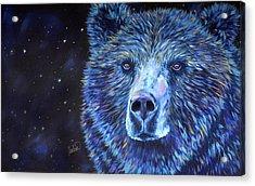Bear Dreams Acrylic Print by Teshia Art