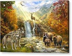 Bear Falls Acrylic Print by Jan Patrik Krasny