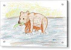 Bear Fishing Acrylic Print by Ethan Chaupiz