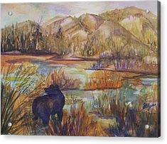 Bear In The Slough Acrylic Print by Ellen Levinson