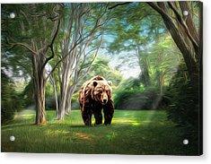 Bear Light Acrylic Print by Richard Trahan
