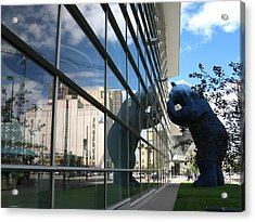 Bear Looking In Acrylic Print