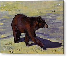 Acrylic Print featuring the painting Bear Shadows by Pattie Wall