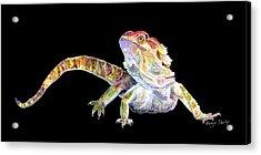 Bearded Dragon Acrylic Print
