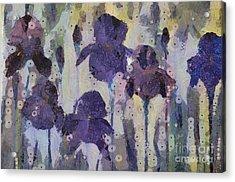 Bearded Irises Acrylic Print