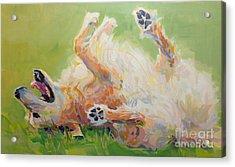 Bears Backscratch Acrylic Print