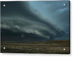 Acrylic Print featuring the photograph Beast In Montana by Ryan Crouse
