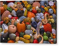 Beautiful Autumn Harvest Acrylic Print