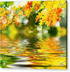 Beautiful Autumn Leaves Acrylic Print by Boon Mee