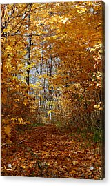 Beautiful Autumn Sanctuary Acrylic Print by Kay Novy