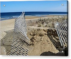 Beautiful Beach Day Acrylic Print