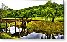 Beautiful Blowing Spring Park Acrylic Print by David Patterson