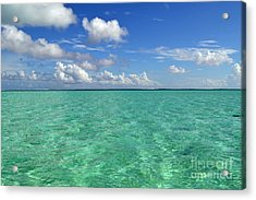 Beautiful Bora Bora Green Water And Blue Sky Acrylic Print by Eva Kaufman