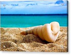 Beautiful Caribbean Sea Acrylic Print by Boon Mee