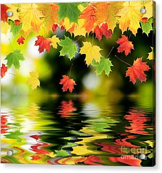 Beautiful Colorful Leaves Acrylic Print by Boon Mee