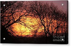Beautiful Dawn Acrylic Print