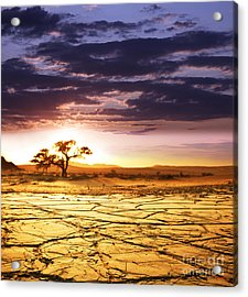 Beautiful Dead Valley Acrylic Print by Boon Mee