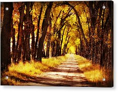 Beautiful Fall Day In Nebraska Acrylic Print